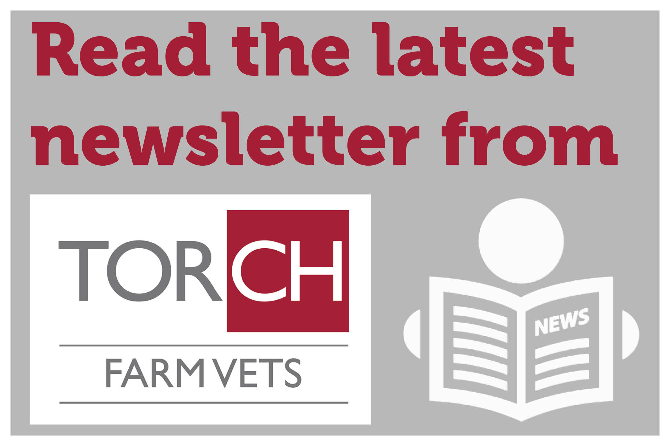 Torch Farm Vets newsletter – July 2019