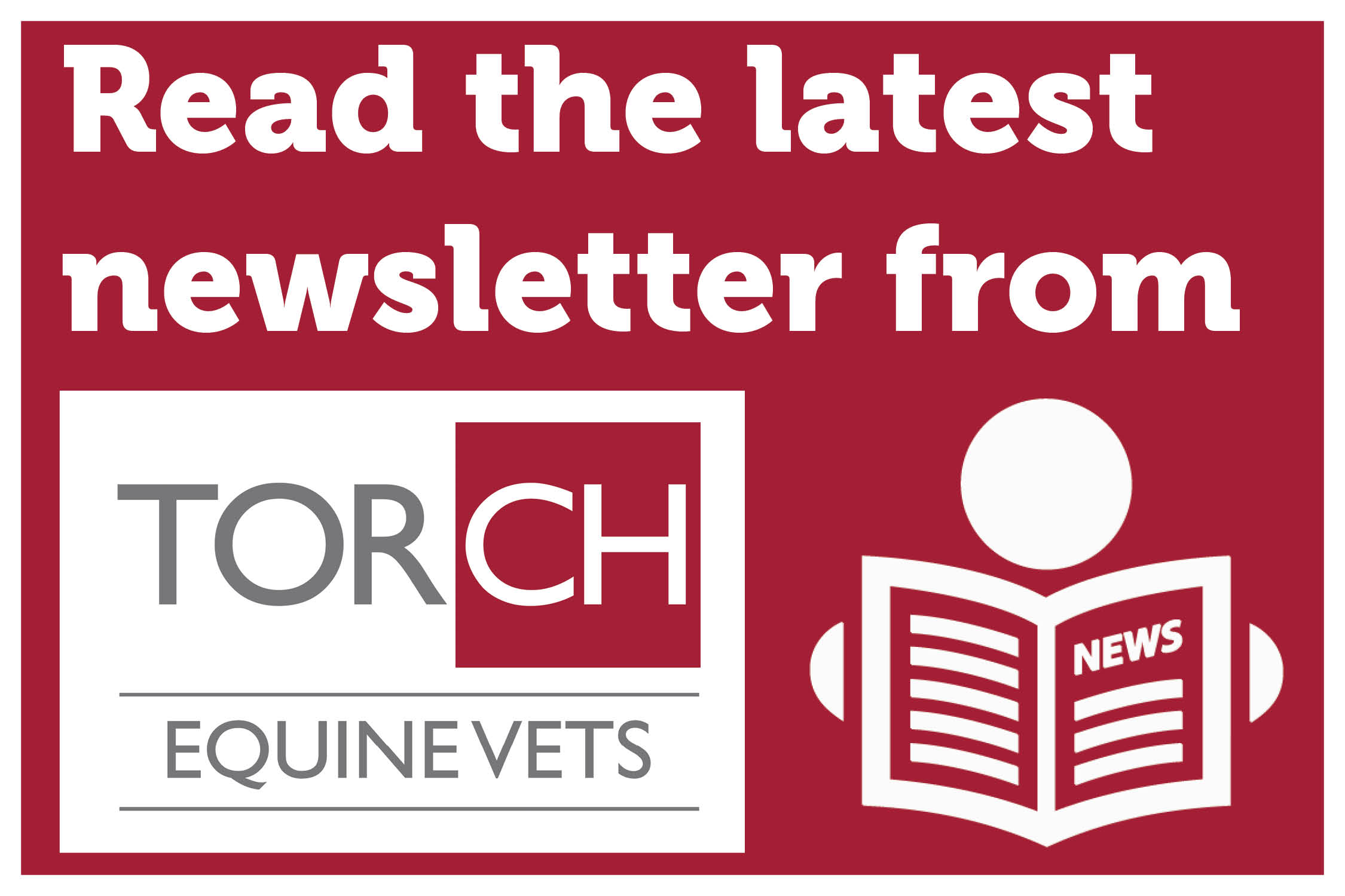 Torch Equine Vets Newsletter – May 2019