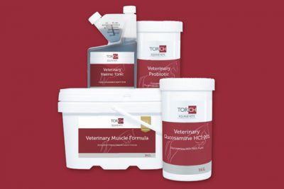 Equine supplements from Torch Equine Vets