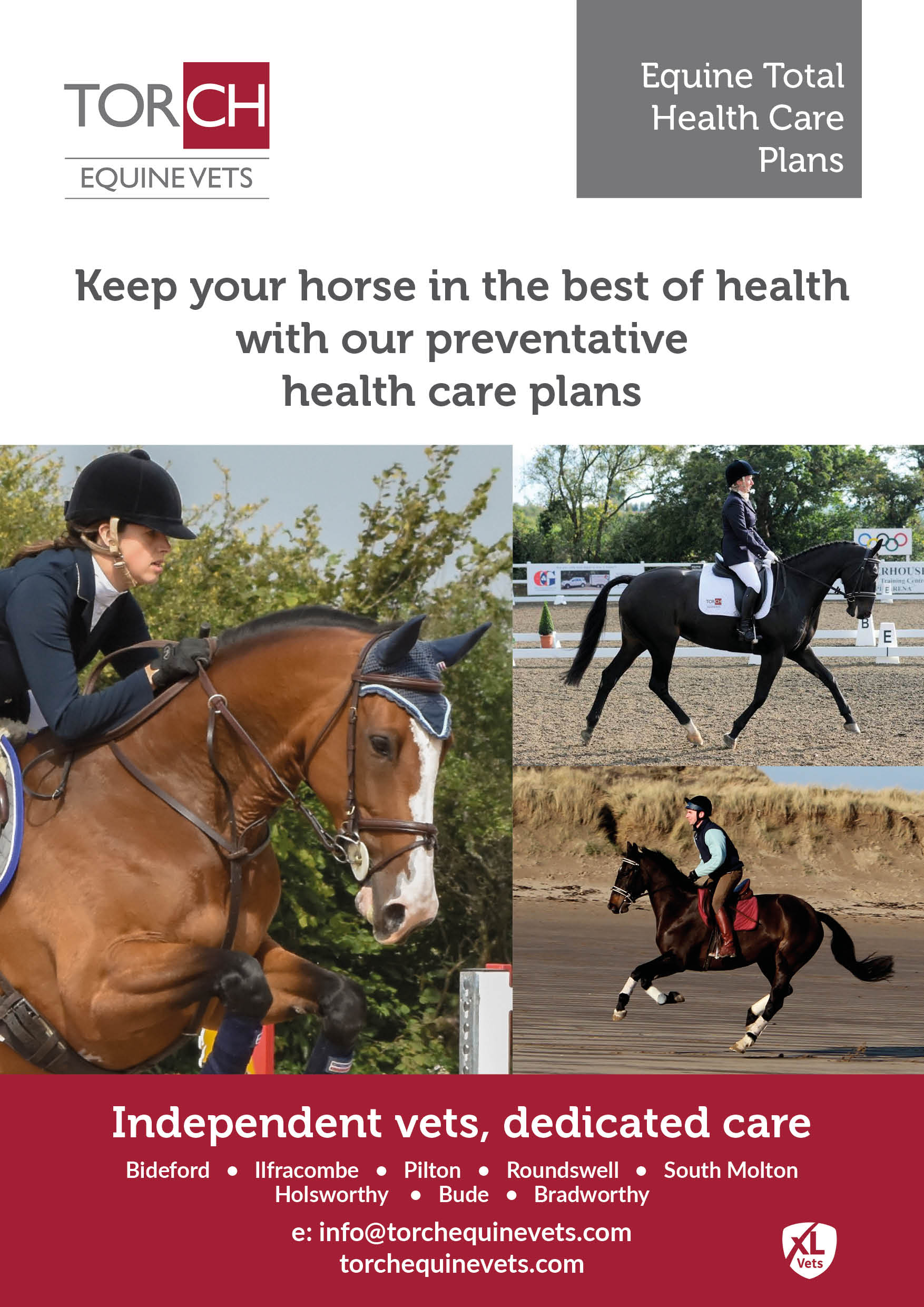 Torch Equine Vets - Equine Total Health Care Plans leaflet